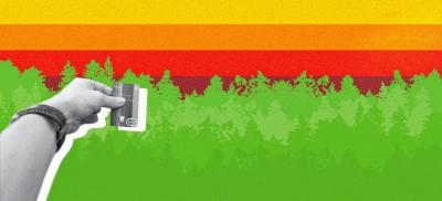 Drzewo za płatność – karta Bunq
